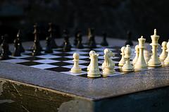 Правила игры в шахматы для начинающих шахматистов