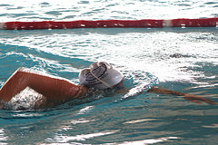 Упражнения для изучения техники плавания кроль на груди