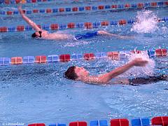 Техника плавания кролем на спине – движения рук