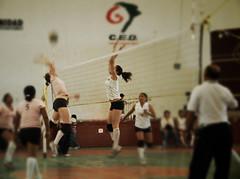 Упражнения для обучения нападающему удару в волейболе