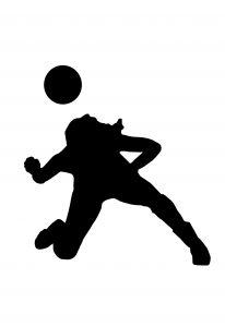 Совершенствование перемещений и падений в волейболе